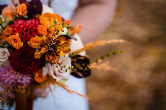 berwick lodge wedding photographer elopement